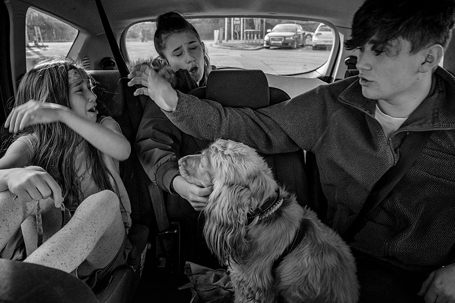 Siblings and dog fighting and arguing in the back of the car